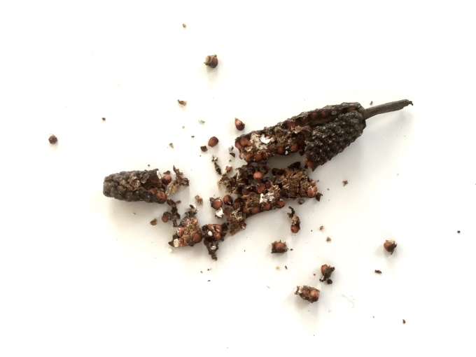 Long Pepper: A short-ish history